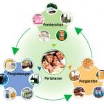 Perubatan alternatif ayurveda dan konsep kesihatan K-Link